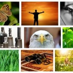 Google Images Style Thumbnail Grid with Pure JavaScript – FlexImages