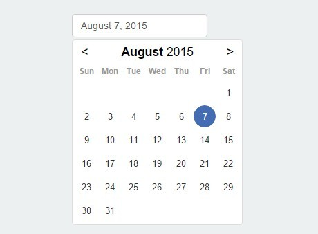 Javascript date picker