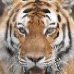 JavaScript Library For Mosaic Image Processing – photomosaic.js