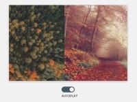 Automatic Image Slider