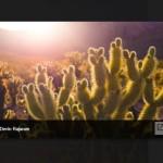 Modern Responsive Gallery / Lightbox – WA MediaBox