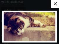 Leaf-Lightbox