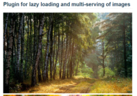 javascript-library-for-lazy-loading-and-multi-serving-of-images