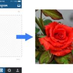 Extract Photo From Screenshot – magic-crop