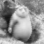Create A Halftone Effect On Video