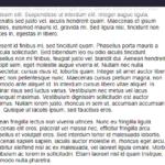 Minimal Custom Scrollbar In Vanilla JavaScript – fakescroll