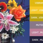 Extract Prominent Colors From Images And Generate Android Palettes – palette-js