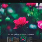 Advanced Image Gallery Viewer In Vanilla JavaScript – zoombox
